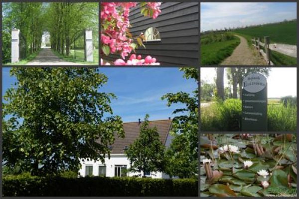 Hotel Vakantiehuizen Hofstede Elzenoord in Vrouwenpolder