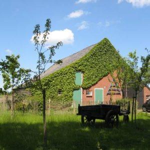 Hotel 't Zwaluwennest in Exloo Drenthe