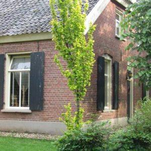 B&B Huis van de Zon in Aalten