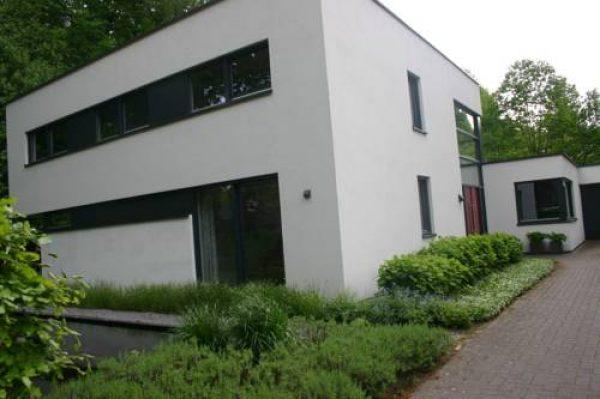 Avellano in Helmond