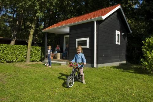 Vakantiepark De Reebok in Oisterwijk