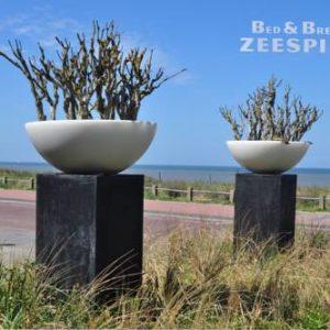 B&B Zeespiegel in Zandvoort